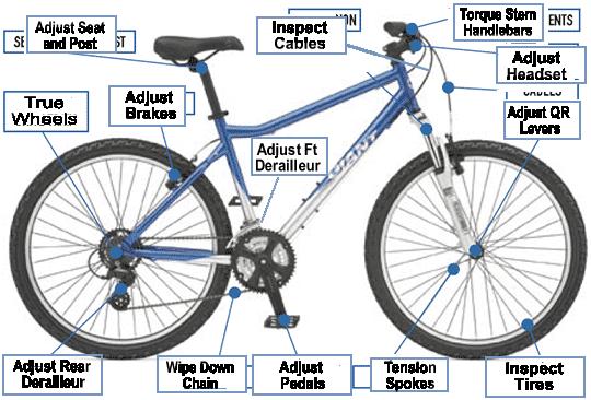 Bike Tune Up >> Repair Service The Cycle Haus Bikes Brews